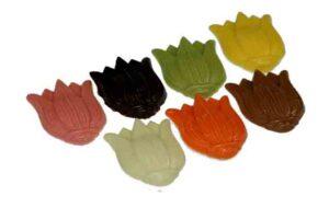 02-21049-Tulpen-massief-assortie