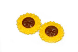 02-21050-Zonnebloemen-gezicht-klein