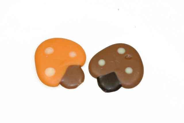 Gekleurde paddenstoeltjes