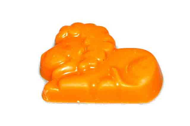Oranje leeuwtje